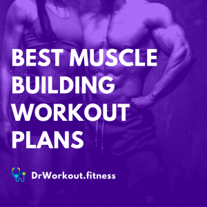 Best Muscle Building Workout Plans