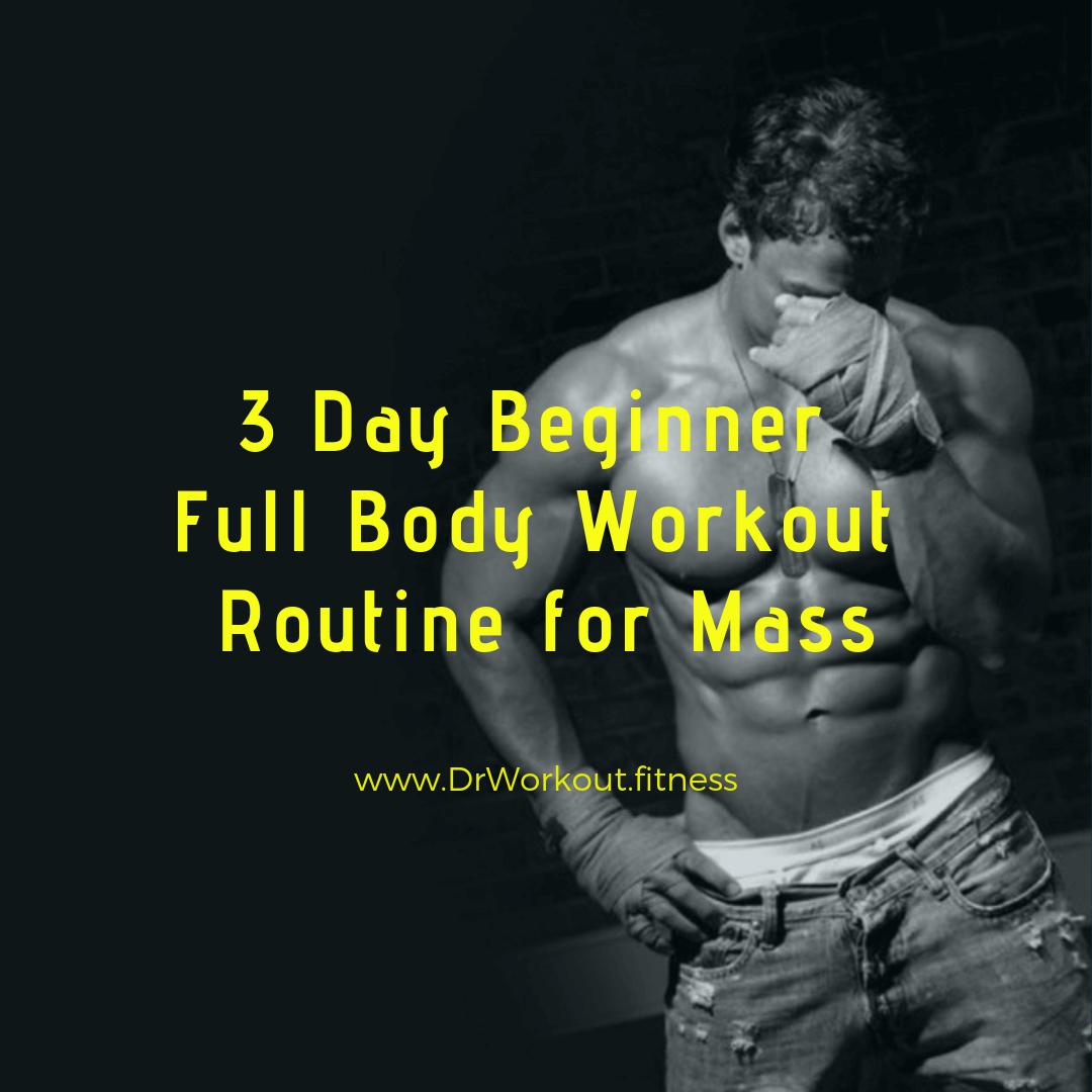 3 Day Beginner Workout Routine