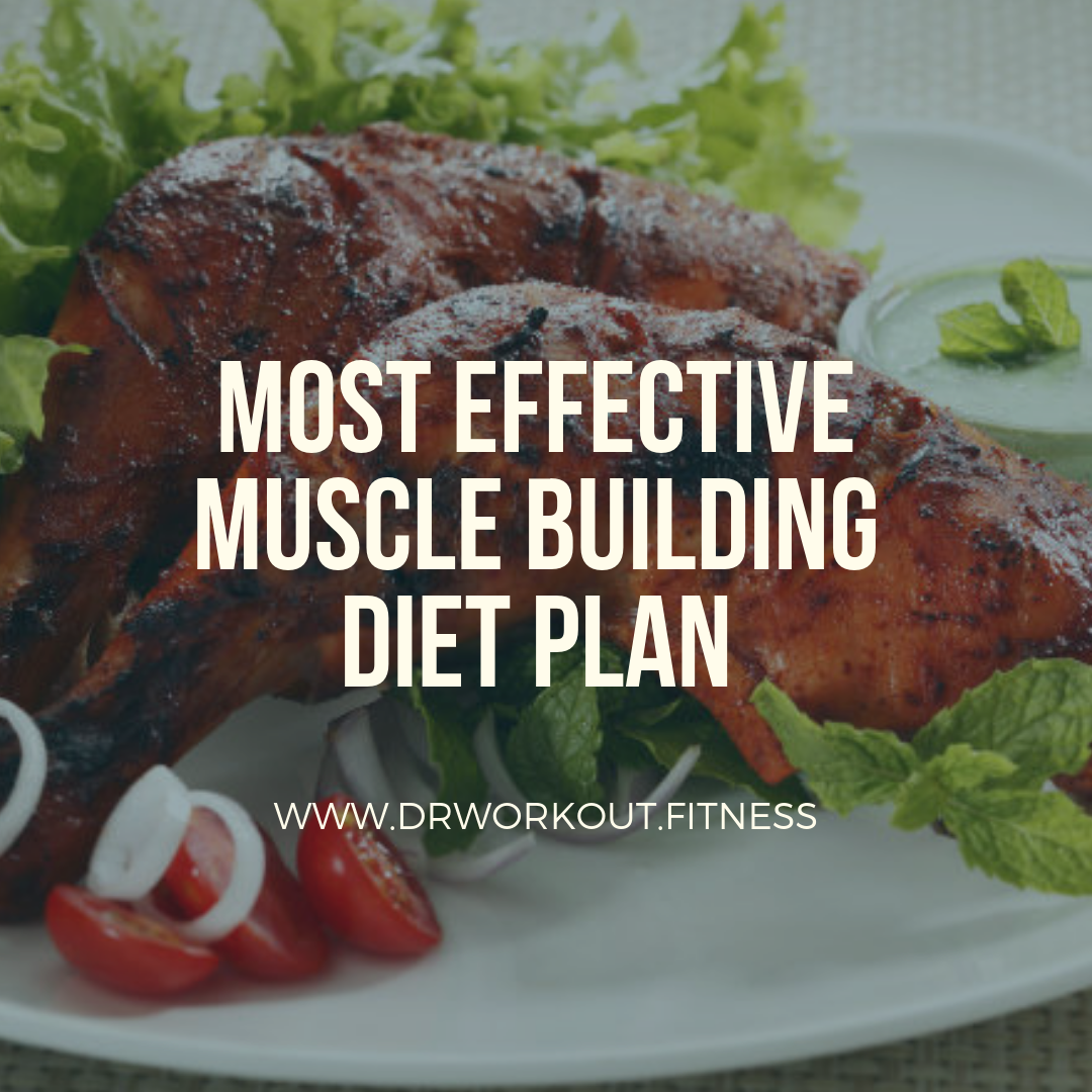 Proper diet plan to gain muscle