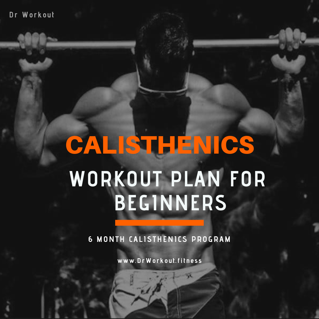 Calisthenics Workout Plan for Beginners – 6 Month Calisthenics Program