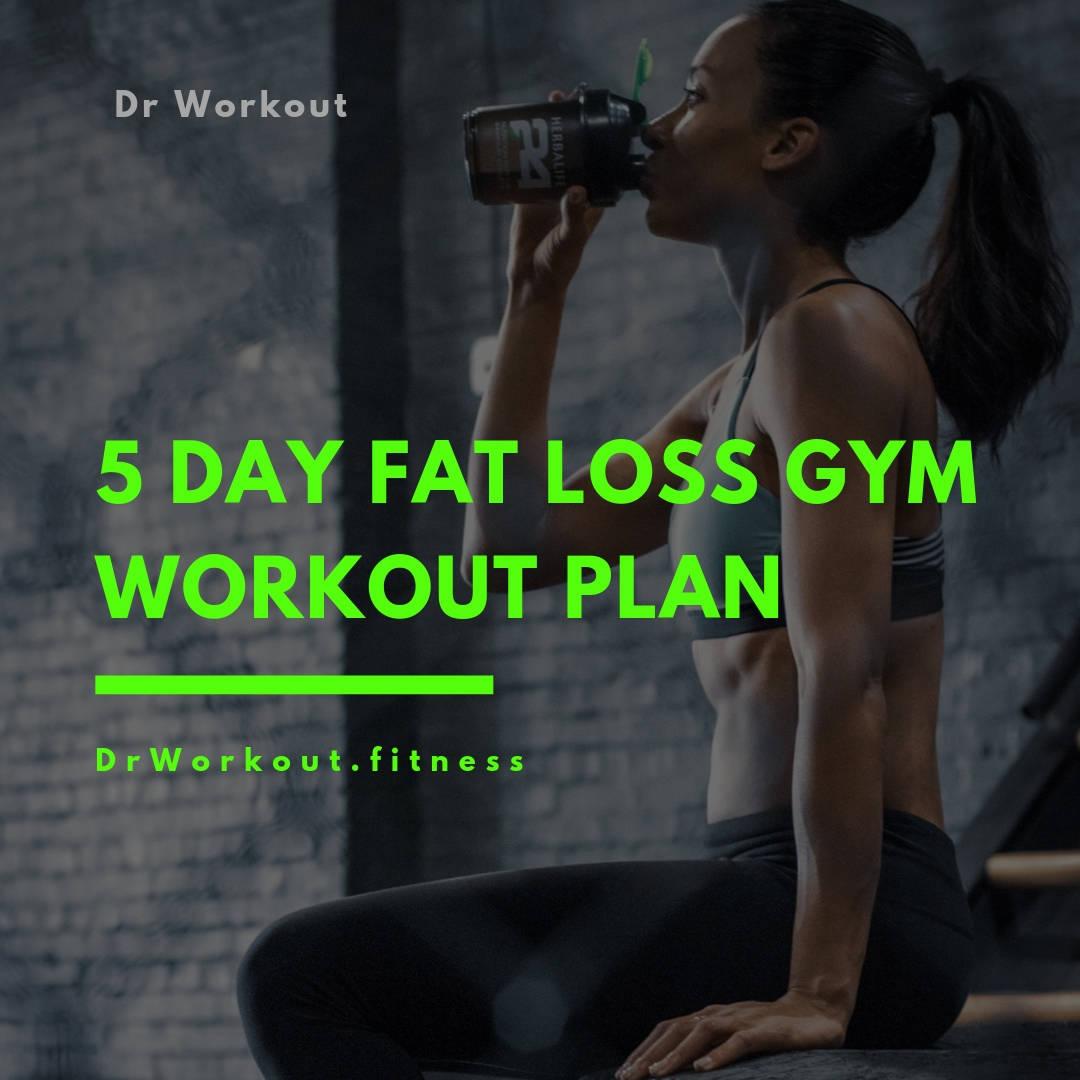 5 day fat loss gym workout plan