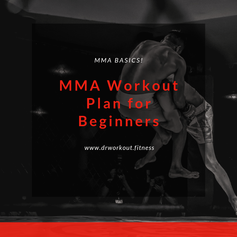 MMA Workout Plan for Beginners