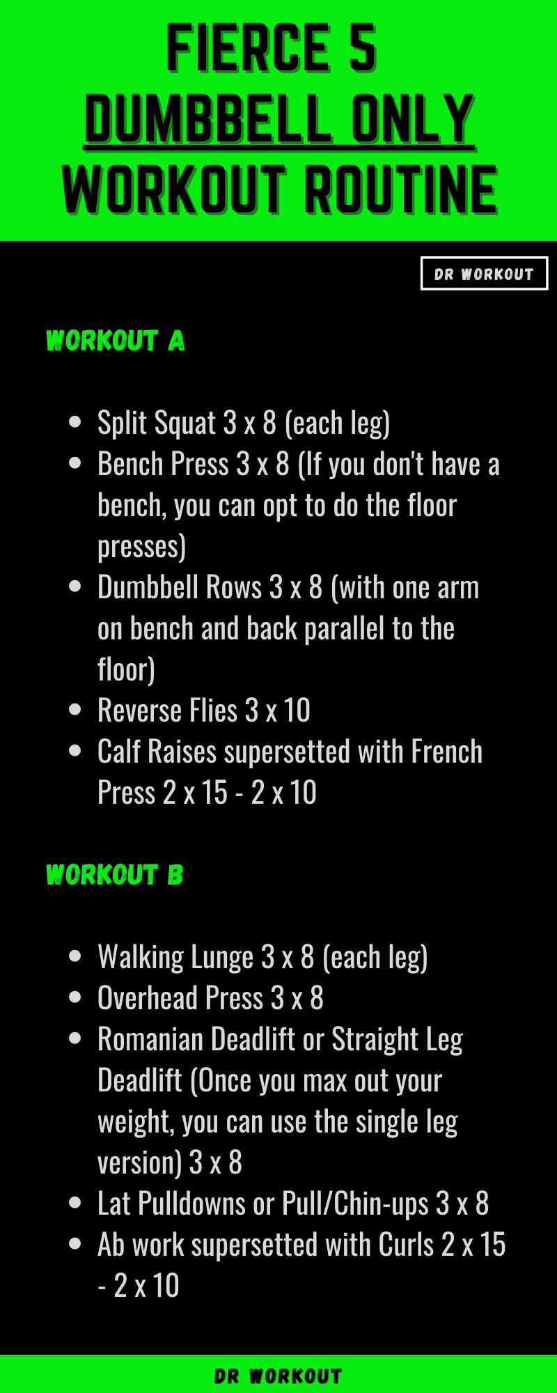 Fierce 5 Novice Dumbbell Only Workout Routine