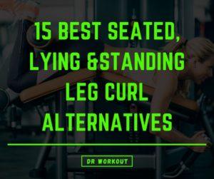 Leg Curl Alternatives