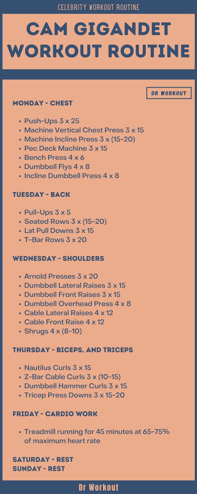 Cam Gigandet Workout Routine