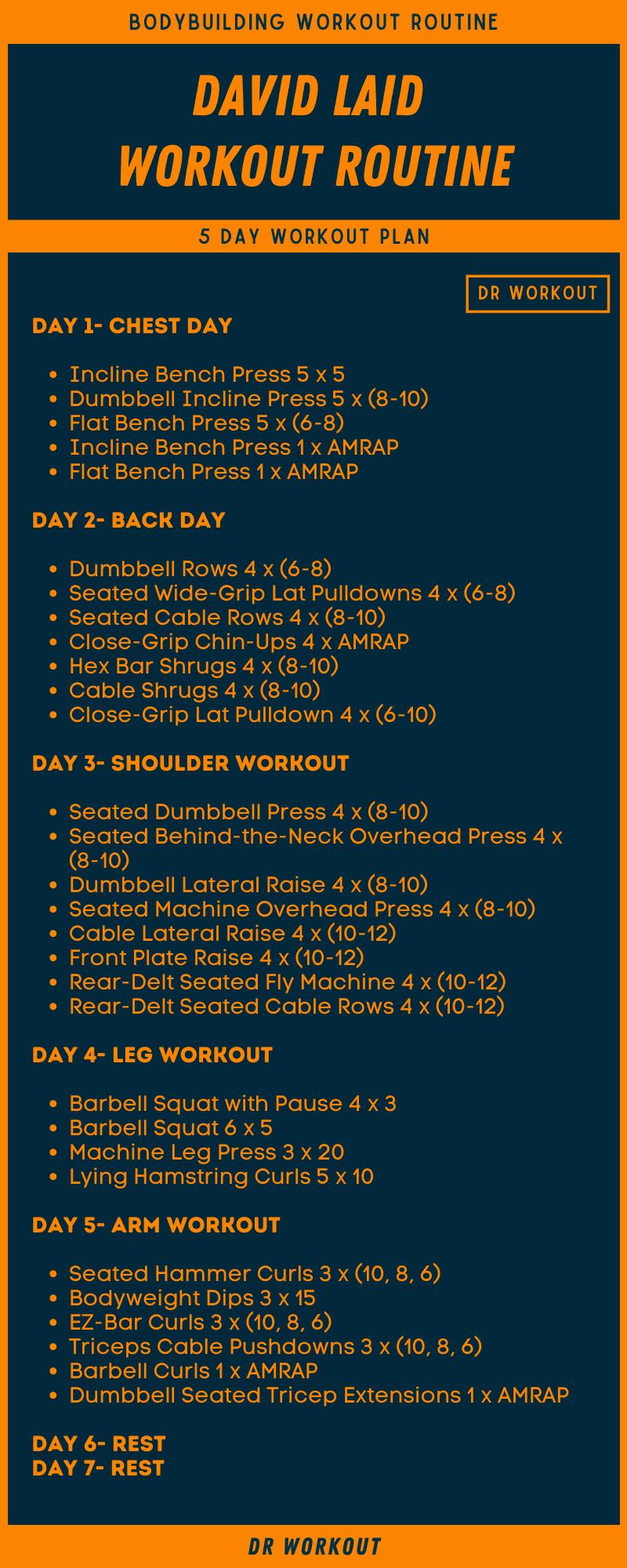 David Laid Workout Plan